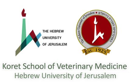 Koret School of Veterinary Medicine Hebrew University of Jerusalem